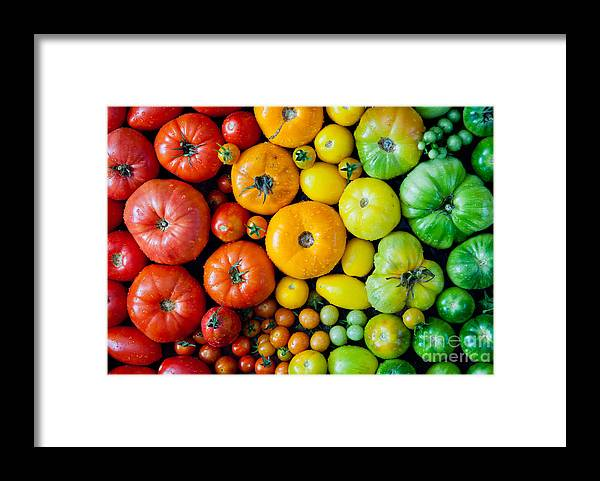 Beauty Framed Print featuring the photograph Fresh Heirloom Tomatoes Background by Letterberry