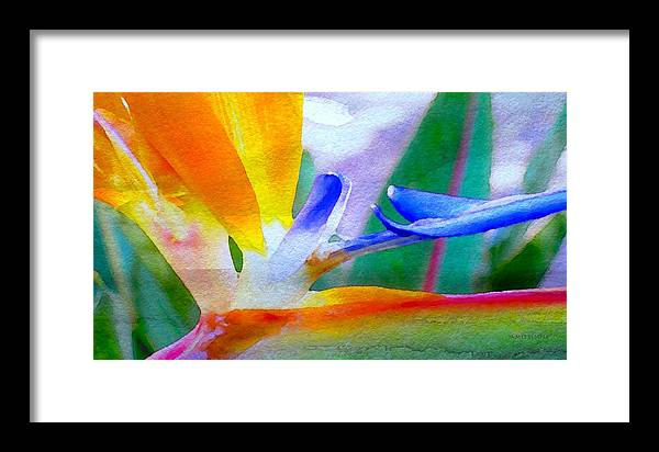Natural High Framed Print featuring the digital art Natural High by James Temple