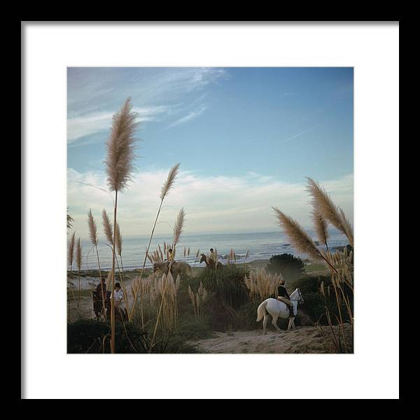 Horse Framed Print featuring the photograph Pebble Beach by Slim Aarons