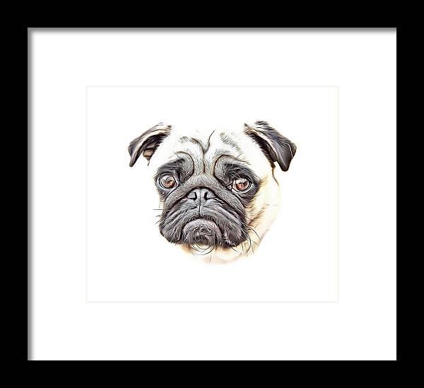 Pug Framed Print featuring the digital art Pug by Russ Carts