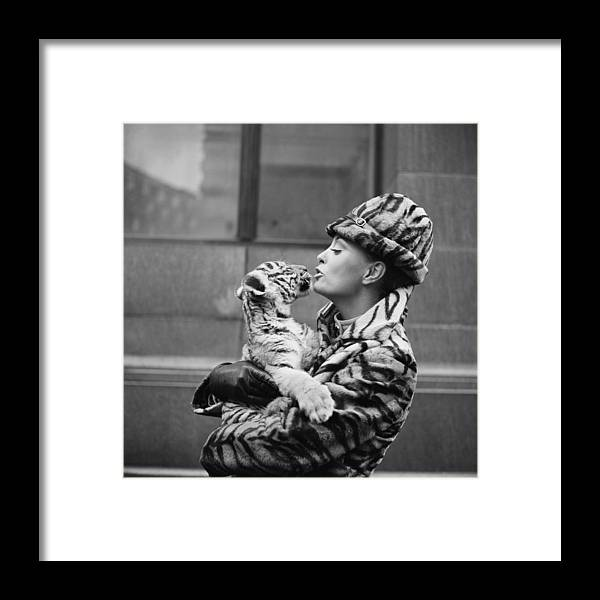 Wind Framed Print featuring the photograph Tiger Lady by Central Press