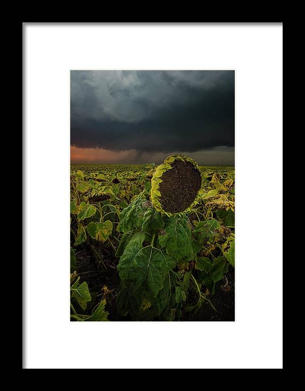 Tornado Framed Print featuring the photograph Twisted 1 by Aaron J Groen