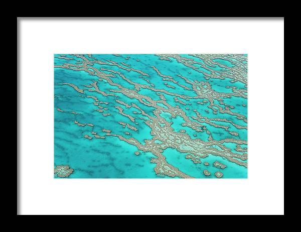 Tranquility Framed Print featuring the photograph Great Barrier Reef, Queensland by Peter Adams