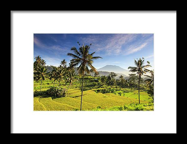 Tranquility Framed Print featuring the photograph Indonesia, Bali, Rice Fields And Agung by Michele Falzone