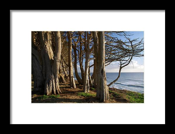 Tranquility Framed Print featuring the photograph Rustic Davenport Coast by Mitch Diamond