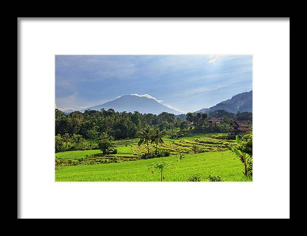 Scenics Framed Print featuring the photograph Indonesia, Bali, Rice Fields And by Michele Falzone