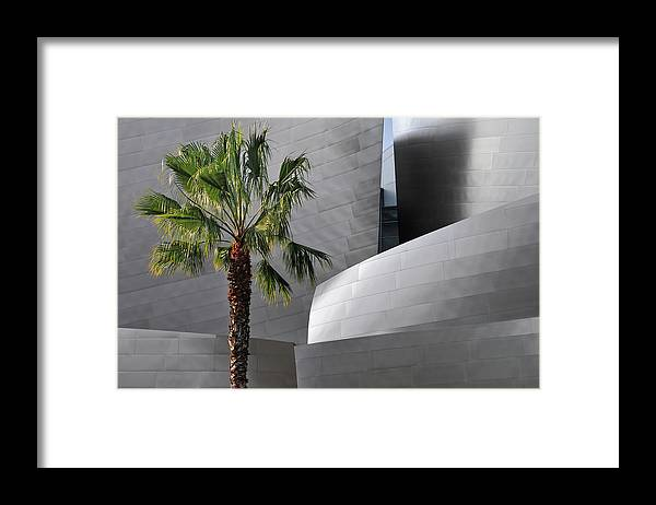 California Framed Print featuring the photograph Disney Concert Hall by Mitch Diamond