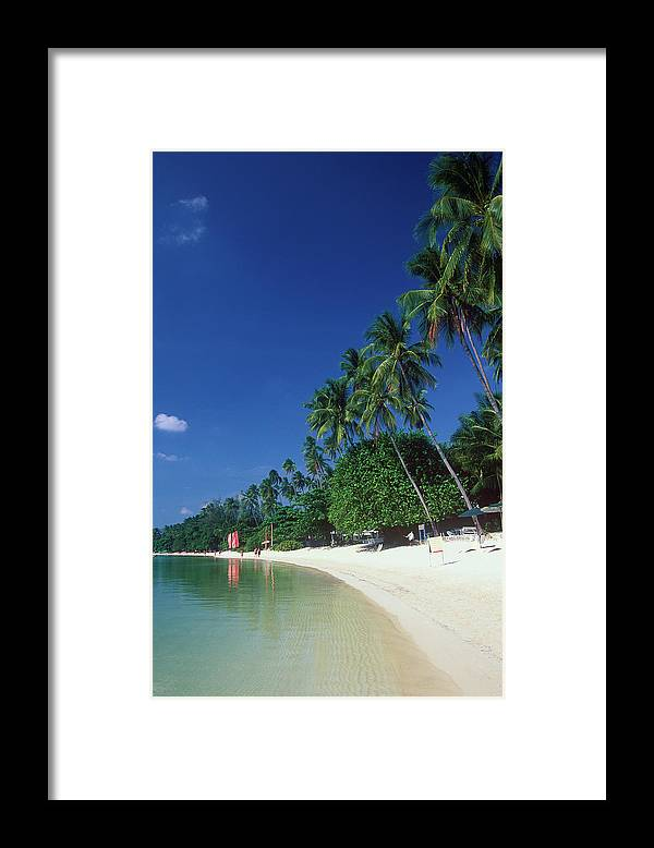 Water's Edge Framed Print featuring the photograph Palm Trees At Sandy Chaweng Beach by Otto Stadler