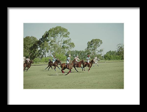 Horse Framed Print featuring the photograph Polo Match by Slim Aarons