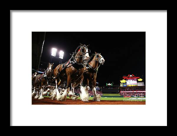 Horse Framed Print featuring the photograph World Series - Boston Red Sox V St by Ronald Martinez