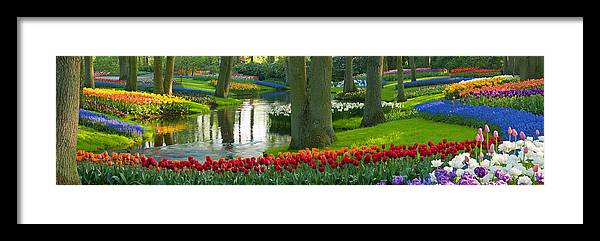 Scenics Framed Print featuring the photograph Spring Flowers In A Park by Jacobh