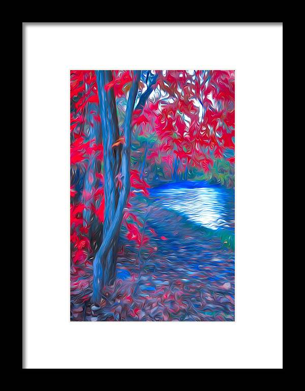 Tree Framed Print featuring the photograph A Delicate Autumn by Tara Turner