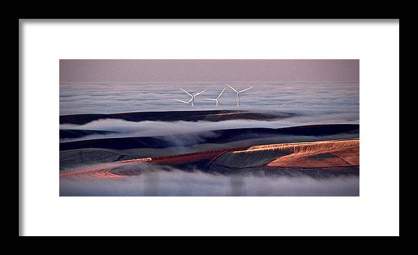 Framed Print featuring the photograph Above the Fog by Lori Leigh