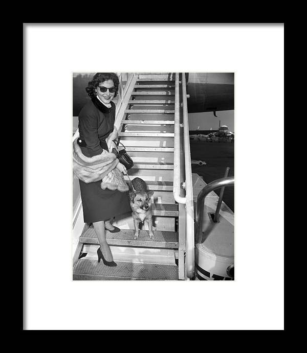1950-1959 Framed Print featuring the photograph Actress Ava Gardner And Her Dog, Rags by New York Daily News Archive