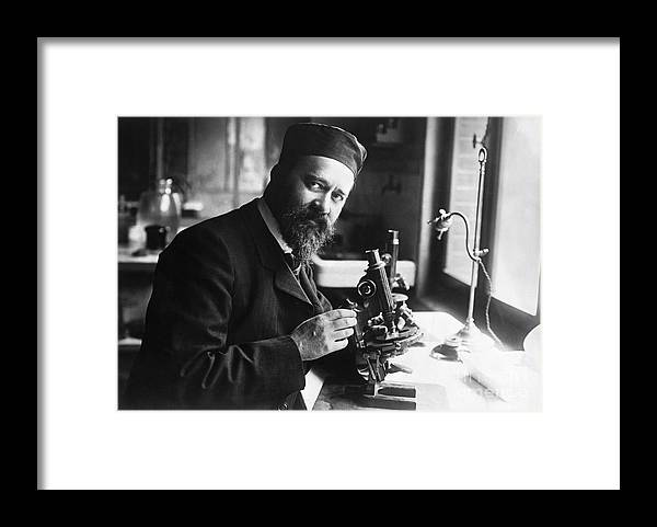 Microscope Framed Print featuring the photograph Albert Calmette Working With Microscope by Bettmann