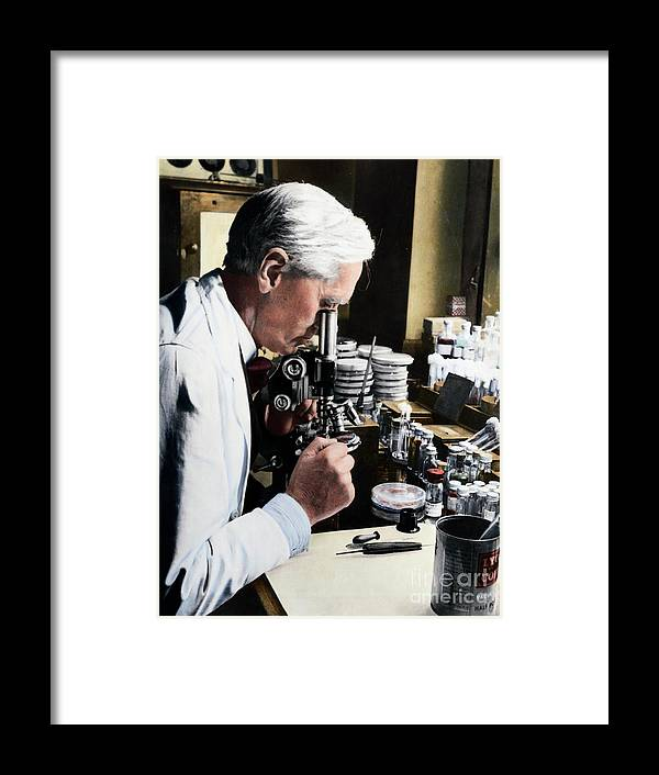 Microscope Framed Print featuring the photograph Alexander Fleming At Microscope by Bettmann