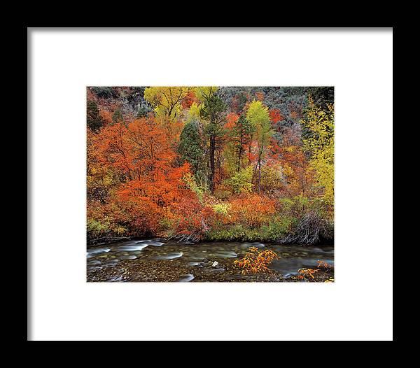 Idaho Scenics Framed Print featuring the photograph Autumn Creek by Leland D Howard