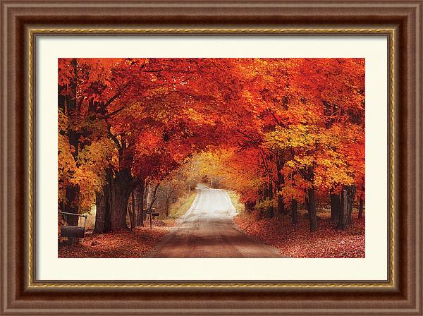 Autumn Road  by Magda Bognar