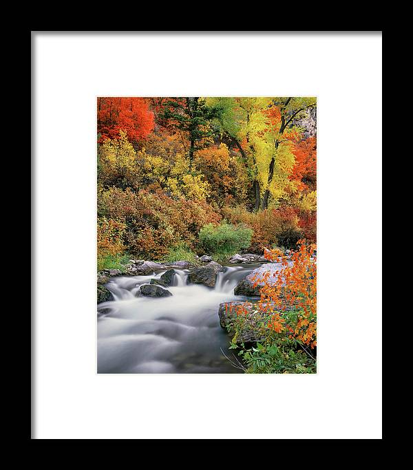 Idaho Scenics Framed Print featuring the photograph Autumn Splendor by Leland D Howard