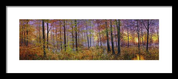 Wolf In A Fall Scene Framed Print featuring the painting Autumn Wolves by Bill Makinson