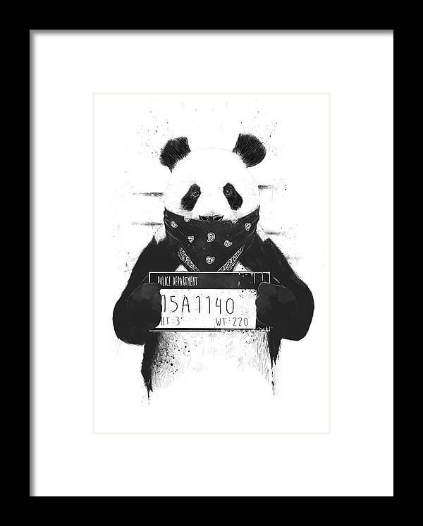 Panda Framed Print featuring the drawing Bad panda by Balazs Solti