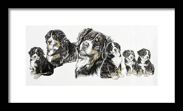 Bernese Mountain Dogs Framed Print featuring the painting Bernese Mountain Dog by Barbara Keith