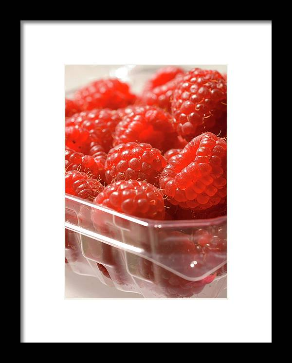 Lifestyles Framed Print featuring the photograph Berries In Carton by Gwmullis