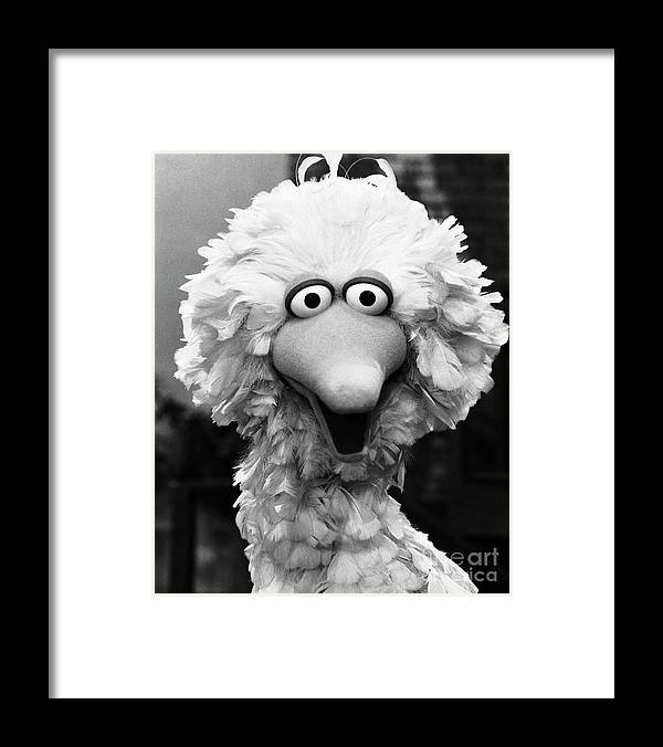 People Framed Print featuring the photograph Big Bird by Bettmann