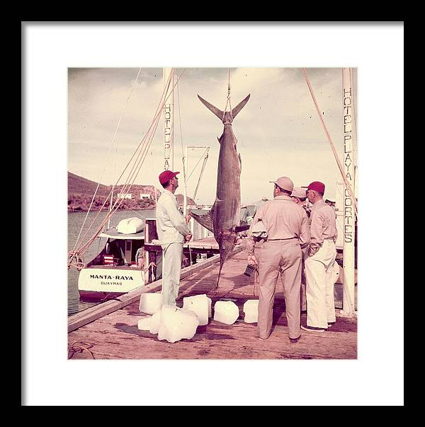 1950-1959 Framed Print featuring the photograph Big Catch by Slim Aarons