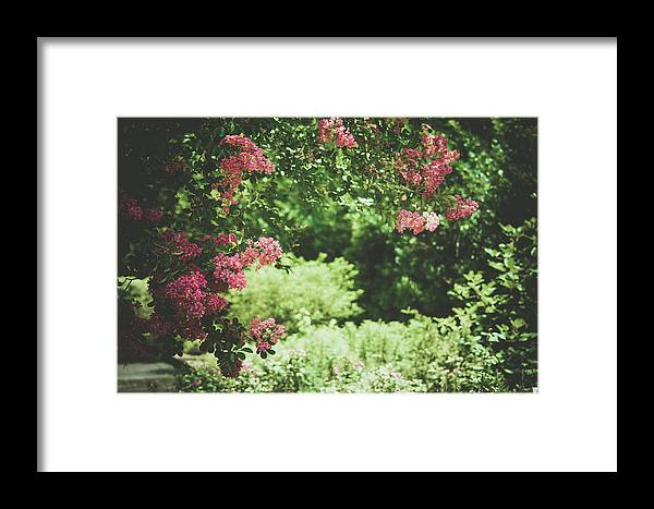 Garden Framed Print featuring the photograph Blooming Garden by Valerie Kingston