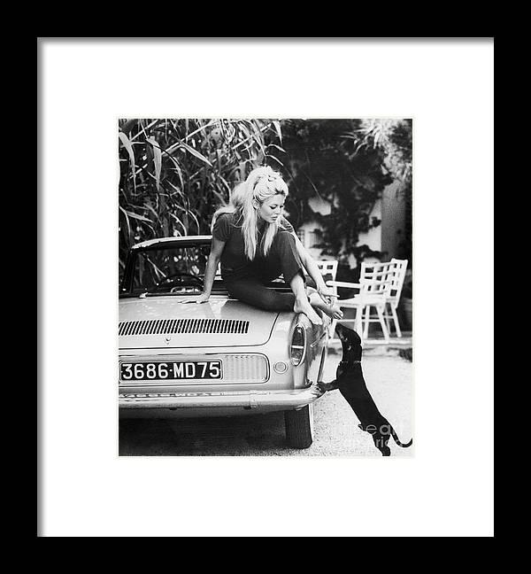 Pets Framed Print featuring the photograph Brigitte Bardot With Dachshund by Bettmann