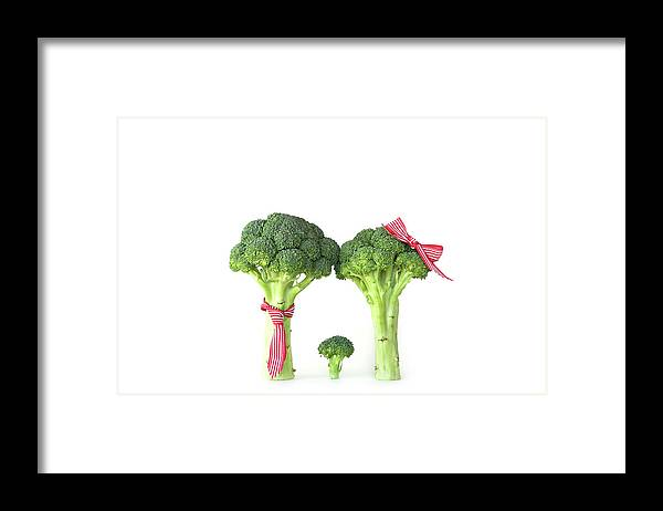 Broccoli Framed Print featuring the photograph Broccoli Dad, Mom And Baby by Stephanie Mull Photography