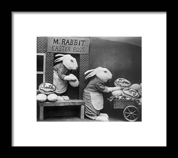 Stuffed Framed Print featuring the photograph Bunny Business by Frees