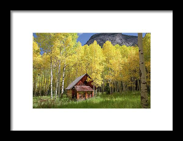 Cabin in the Woods by Lynn Taylor