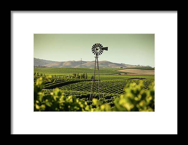 Sonoma County Framed Print featuring the photograph California Wine Country by Halbergman