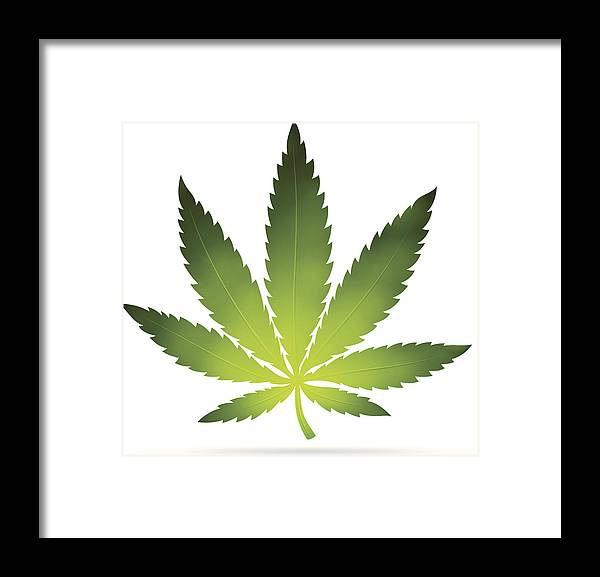 White Background Framed Print featuring the digital art Cannabis Leaf by Filo