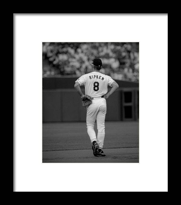 Baltimore Framed Print featuring the photograph Carl Ripken Of The Baltimore Orioles by New York Daily News Archive