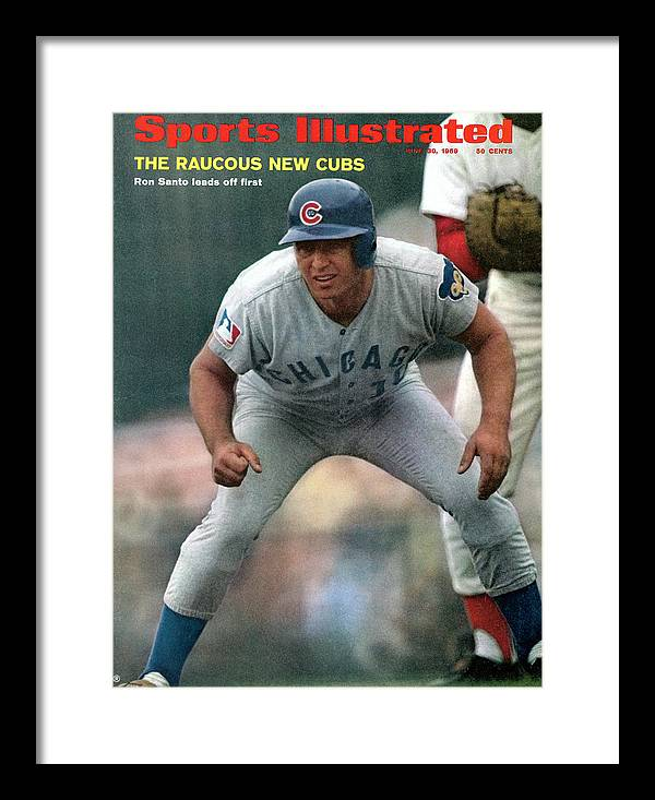 National League Baseball Framed Print featuring the photograph Chicago Cubs Ron Santo... Sports Illustrated Cover by Sports Illustrated