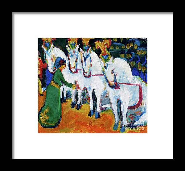 Horse Framed Print featuring the drawing Circus Horses Dressage by Heritage Images