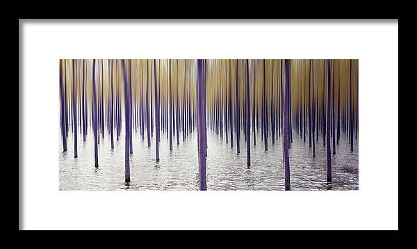 Tranquility Framed Print featuring the photograph Climate Change by Iñaki De Luis