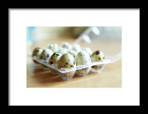 Large Group Of Objects Framed Print featuring the photograph Close Up Of Carton Of Quail Eggs by Debby Lewis-harrison