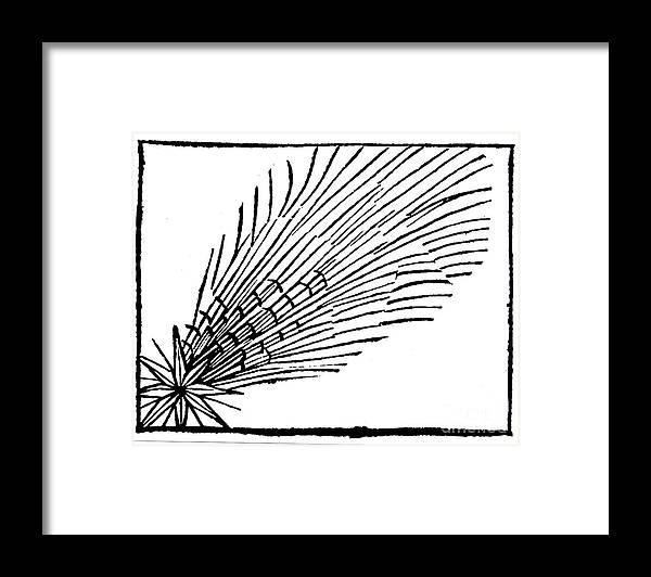 Comet Framed Print featuring the drawing Comet Of 684 Halley, 1493 by Print Collector
