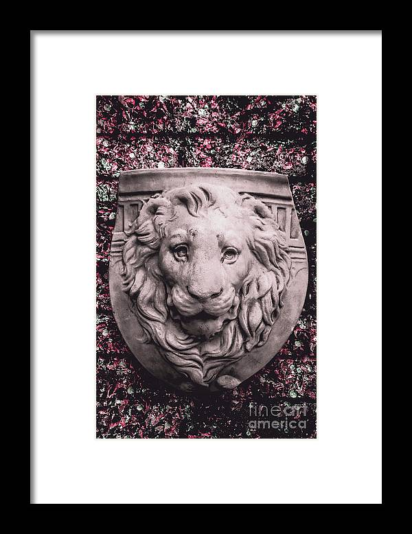 Courage Crest Framed Print By Jorgo Photography