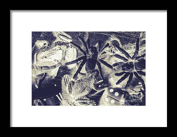 Wild Framed Print featuring the photograph Creatures Of The Night by Jorgo Photography - Wall Art Gallery