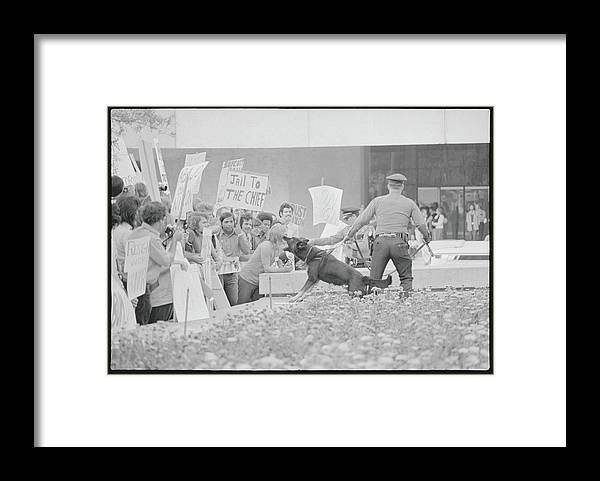 Crowd Framed Print featuring the photograph Crowd Protesting President Nixon by Bettmann