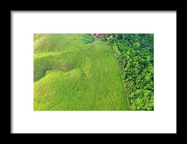 Sebastian Kennerknecht Framed Print featuring the photograph Deforested Pasture And Rainforest, Mamoni Valley by Sebastian Kennerknecht