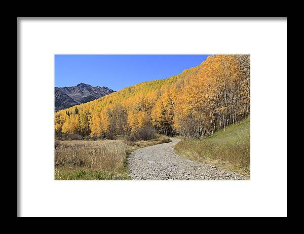 Scenics Framed Print featuring the photograph Dirt Road In The Elk Mountains, Colorado by John Kieffer