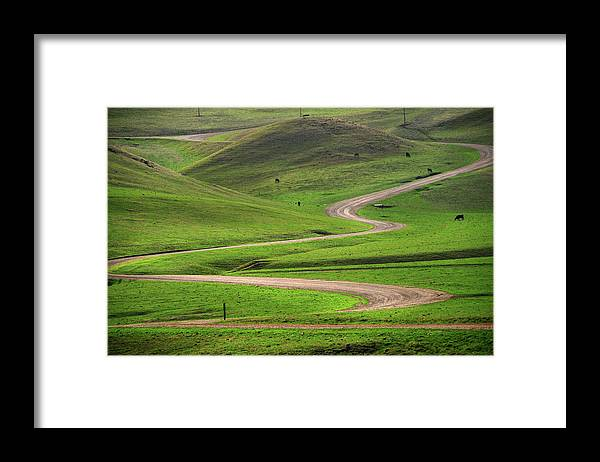 Tranquility Framed Print featuring the photograph Dirt Road Through Green Hills by Mitch Diamond