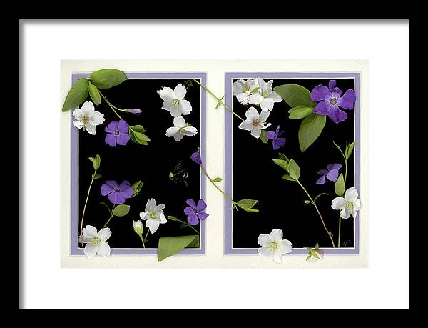 Framed Print featuring the photograph Double Delight by Sandi F Hutchins