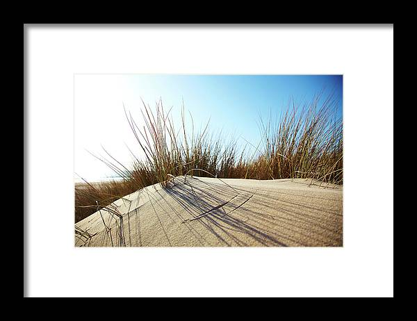 Tranquility Framed Print featuring the photograph Dune Grass On A Sand Dune At The Beach by Thomas Northcut